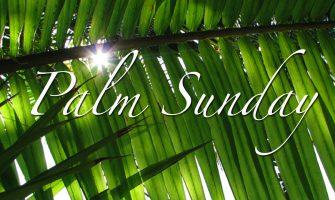 Palm Sunday 2017 celebrations to hold on tomorrow