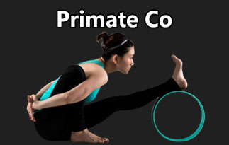 Primate Co Review – The Fitness Products To Regain Your Posture