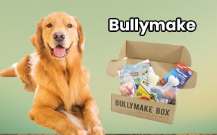 Bullymake Review – Toughest Toys & Treats For Your Pets