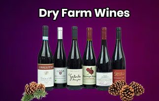 Dry Farm Wines Review – Enjoy Beautiful Nights With High-Quality Natural Wines