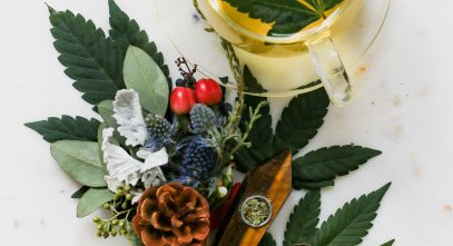 Growers Choice Seeds Reviews – Best Premium Cannabis Seeds
