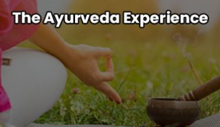 The Ayurveda Experience   Upgrade Your Lifestyle Beauty Products