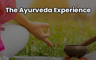 The Ayurveda Experience | Upgrade Your Lifestyle Beauty Products