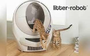 Litter-Robot Review | A Hi-Tech Self-Cleaning Litter Box