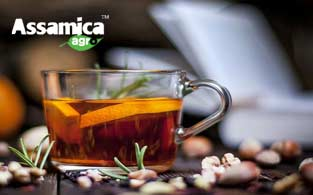 Assamica Agro Review | The Best Organic Green Tea for Sipping