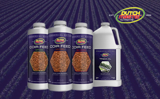 Dutch Master Nutrients Review | Powerful Plant Fertilizers for Crops