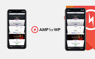 6 Best Reasons To Choose AMP For WP